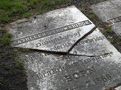 Elmwood Cemetery.